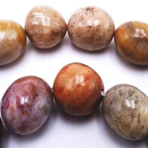 Fossil Coral Beads